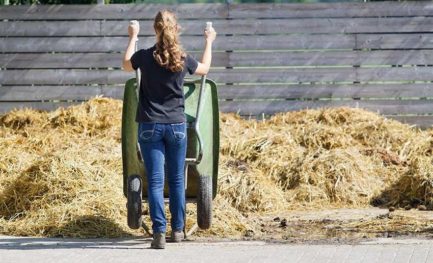 kruiwagen-met-paardenmest-kiepen-bij-mestplaat-manege-in-de-buurt